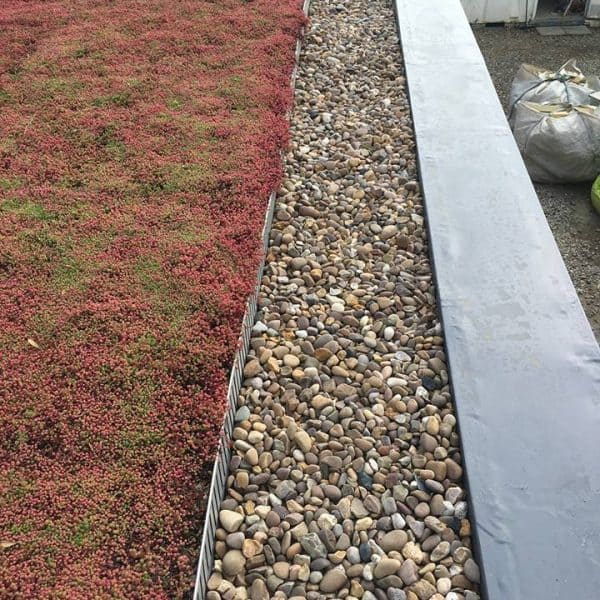 red flat roof