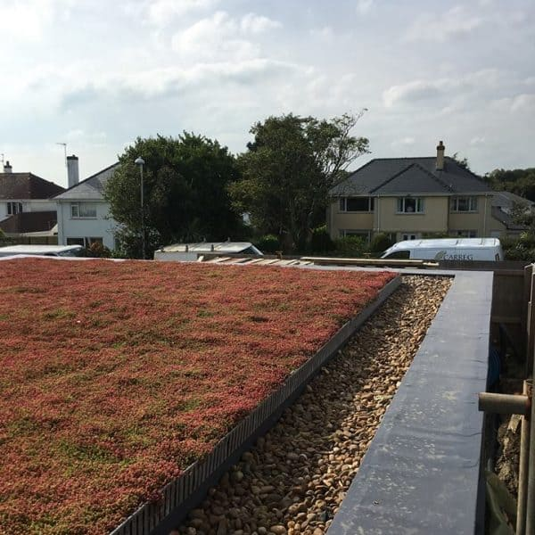 Red flat roof looking over street